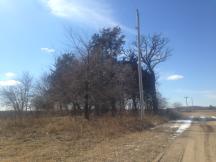 iv abandoned farmstead